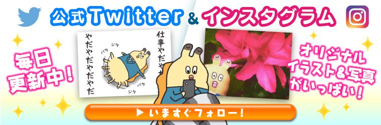 Twitter & Instagram